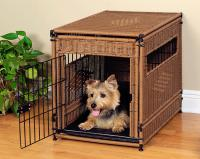 pets-furniture-dogs8