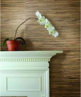 eco-style-texture-for-wall4