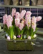spring-flowers-decoration2