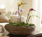 easter-table-setting-pb23