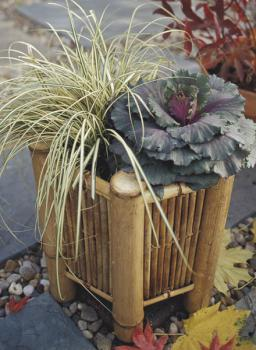 bamboo-decor-ideas-outdoor1