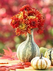 pumpkin-as-vase-creative-ideas1