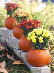pumpkin-as-vase-creative-ideas5