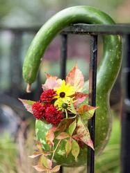 pumpkin-as-vase-creative-ideas6