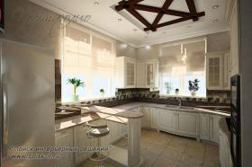 project-kitchen-poisk-ir11-1