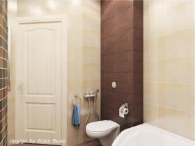 project-tile-in-bathroom15-3
