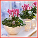 home-flowers-in-new-year-decorating02