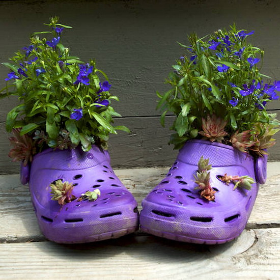 shoes-container-garden