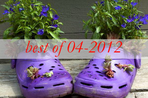 best9-shoes-container-garden