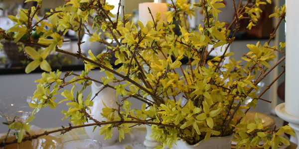 blooming-branches-spring-table-setting2