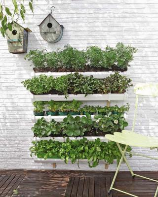 diy-vertical-garden1