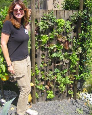 diy-vertical-garden3
