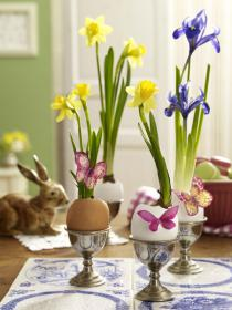 flowers-in-egg-shell-ideas15
