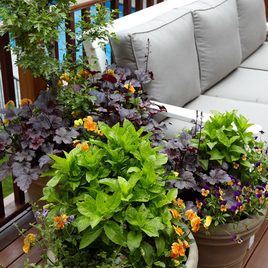 flowers-on-balcony-part2