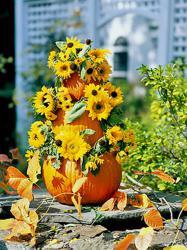 pumpkin-as-vase-creative-ideas17
