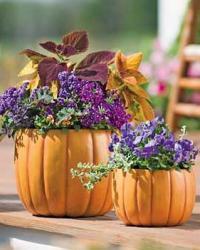 pumpkin-as-vase-creative-ideas19