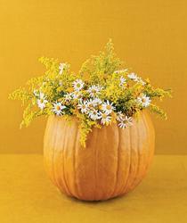 pumpkin-as-vase-creative-ideas20