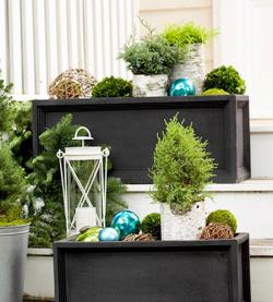 tiny-coniferous-winter-decor1-10a