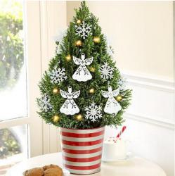 tiny-coniferous-winter-decor4-2