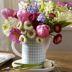 bellis-perennis-spring-decorating11