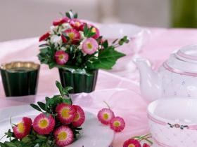 bellis-perennis-spring-decorating18