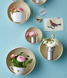 bellis-perennis-spring-decorating2
