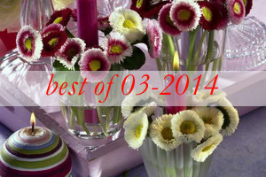 best8-bellis-perennis-spring-decorating