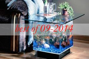 best3-unusual-fish-tanks-ideas