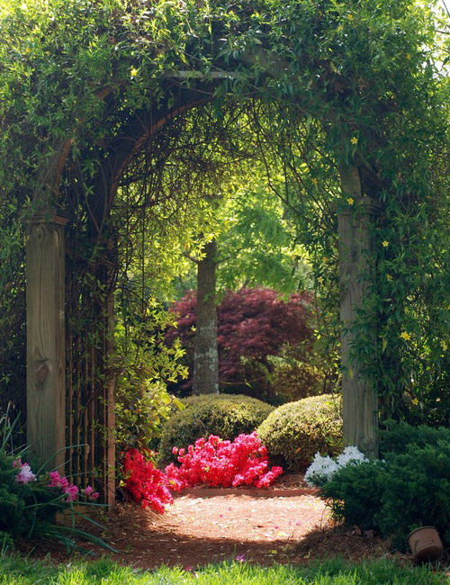 amazing-gardens-like-of-fairy-tales12