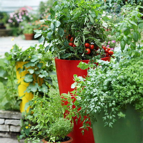 design-ideas-to-grow-veggies-in-containers