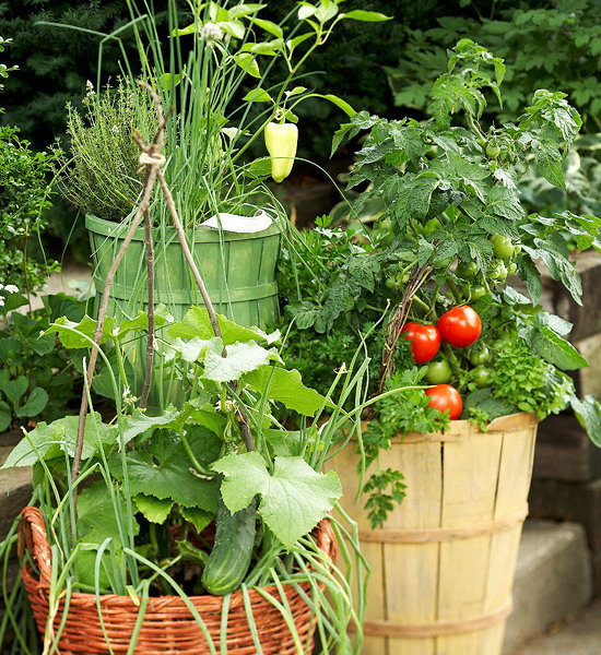 design-ideas-to-grow-veggies-in-containers10