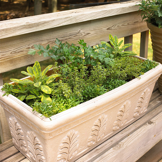 design-ideas-to-grow-veggies-in-containers14