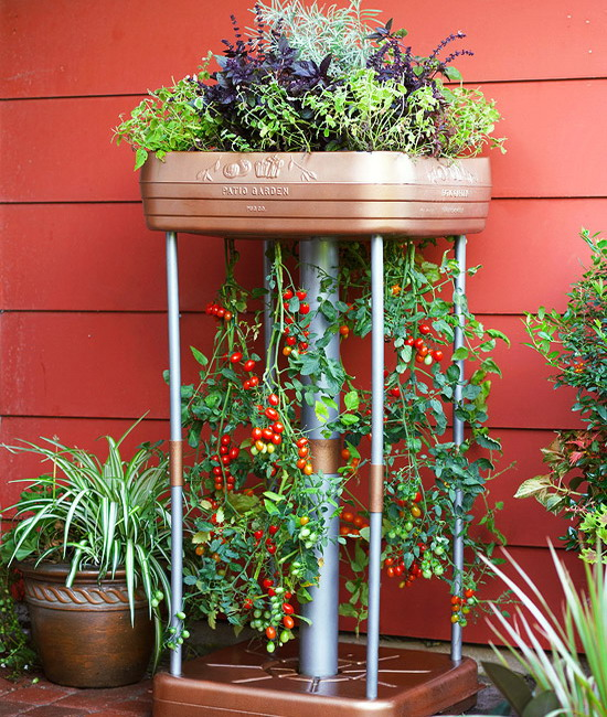 design-ideas-to-grow-veggies-in-containers20