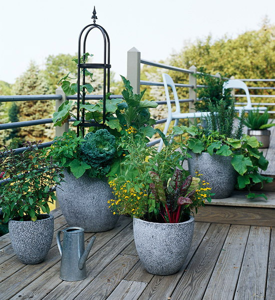 design-ideas-to-grow-veggies-in-containers7