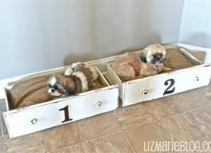 simple-diy-ideas-small-doggie-beds12