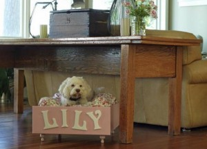 simple-diy-ideas-small-doggie-beds13