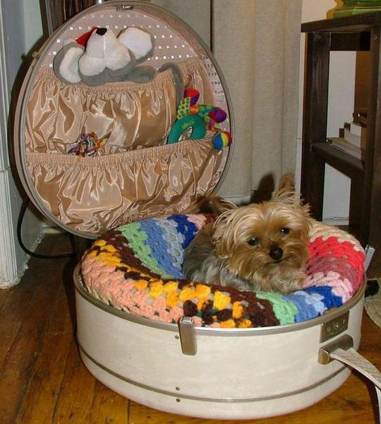 Кроватка для собаки своими руками фото 568