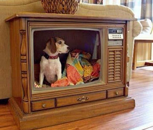 Телевизор для улицы своими руками