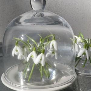 spring-flowers-creative-vases1-6-1