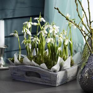 spring-flowers-creative-vases4-3-2