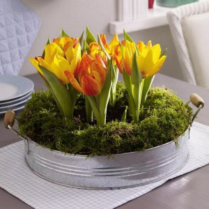 spring-flowers-creative-vases5-3-2