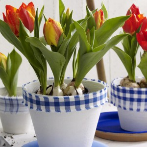 spring-flowers-creative-vases7-2-1