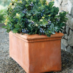 creative-use-large-pots-and-containers-in-garden22-2