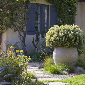 creative-use-large-pots-and-containers-in-garden7-1