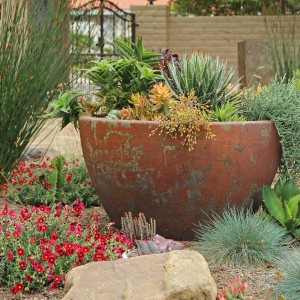creative-use-large-pots-and-containers-in-garden7-2