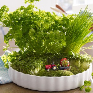 veggies-and-herbs-creative-tablescape-ideas9-2