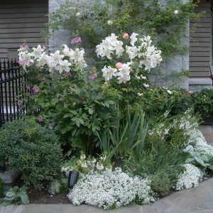 landscape-design-for-romantics4-2