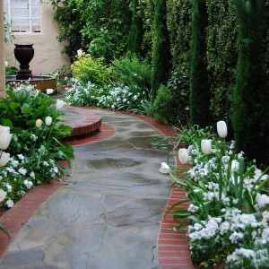 landscape-design-for-true-extroverts2-1-1