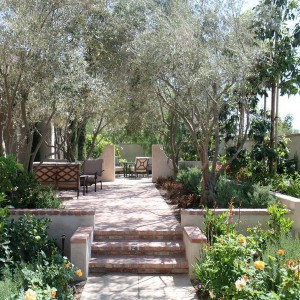 landscape-design-for-true-extroverts6-2