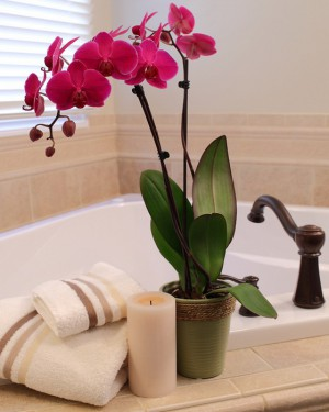 upgrade-bathroom-in-weekend-17-easy-tricks10-1